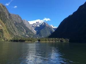 Next morning, a sunny cruise on Milford Sound (a fiord)